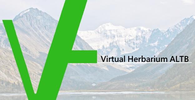 Гербарий Южно-Сибирского ботанического сада (ALTB)